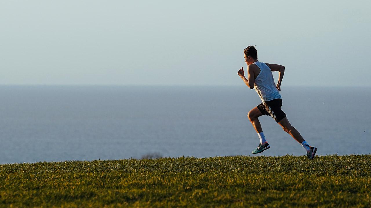Adidas Terrex & Nike Trail