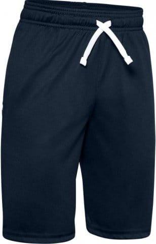 UA Prototype Wordmark Shorts