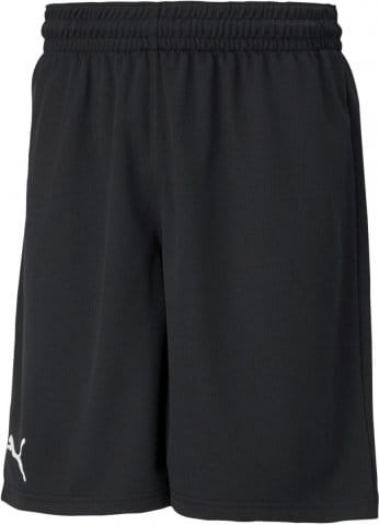 basket training short