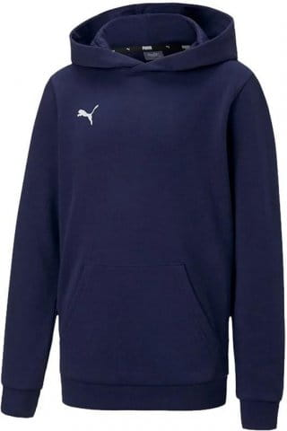 teamGOAL 23 Casuals Hoody Jr