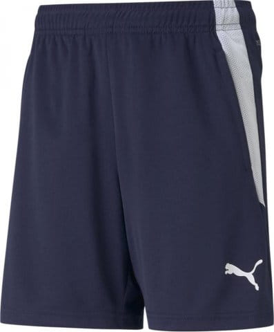 teamLIGA Training Shorts Jr