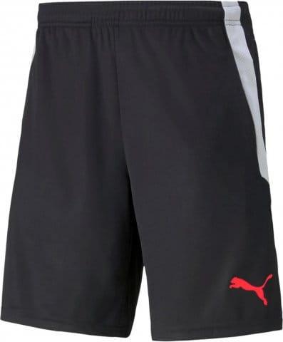 teamLIGA Training Shorts 2