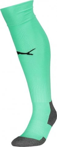 Team LIGA Socks CORE