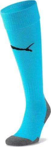 Team LIGA Socks CORE