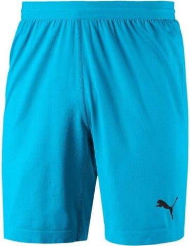 FINAL evoKNIT GK Shorts AQUARIUS- Bl