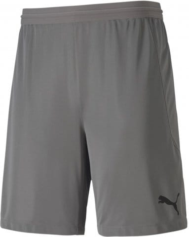 teamFINAL 21 knit Shorts