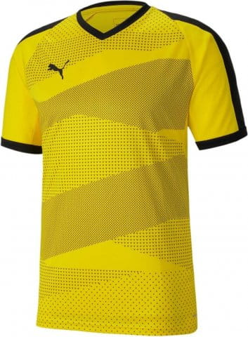 teamFINAL Indoor Jersey