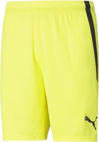 teamLIGA Shorts