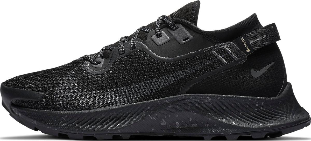 Trailové topánky Nike WMNS PEGASUS TRAIL 2 GTX