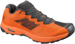 Zapatillas para trail Salomon X ALPINE PRO