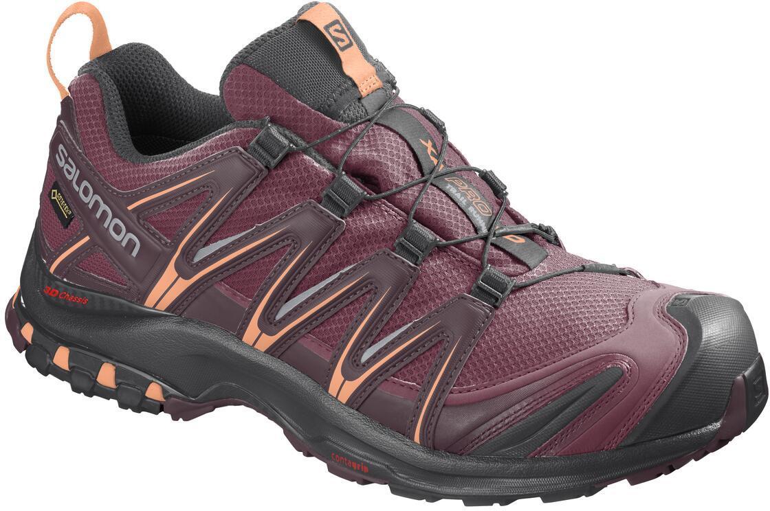 Zapatillas para trail Salomon XA PRO 3D GTX W