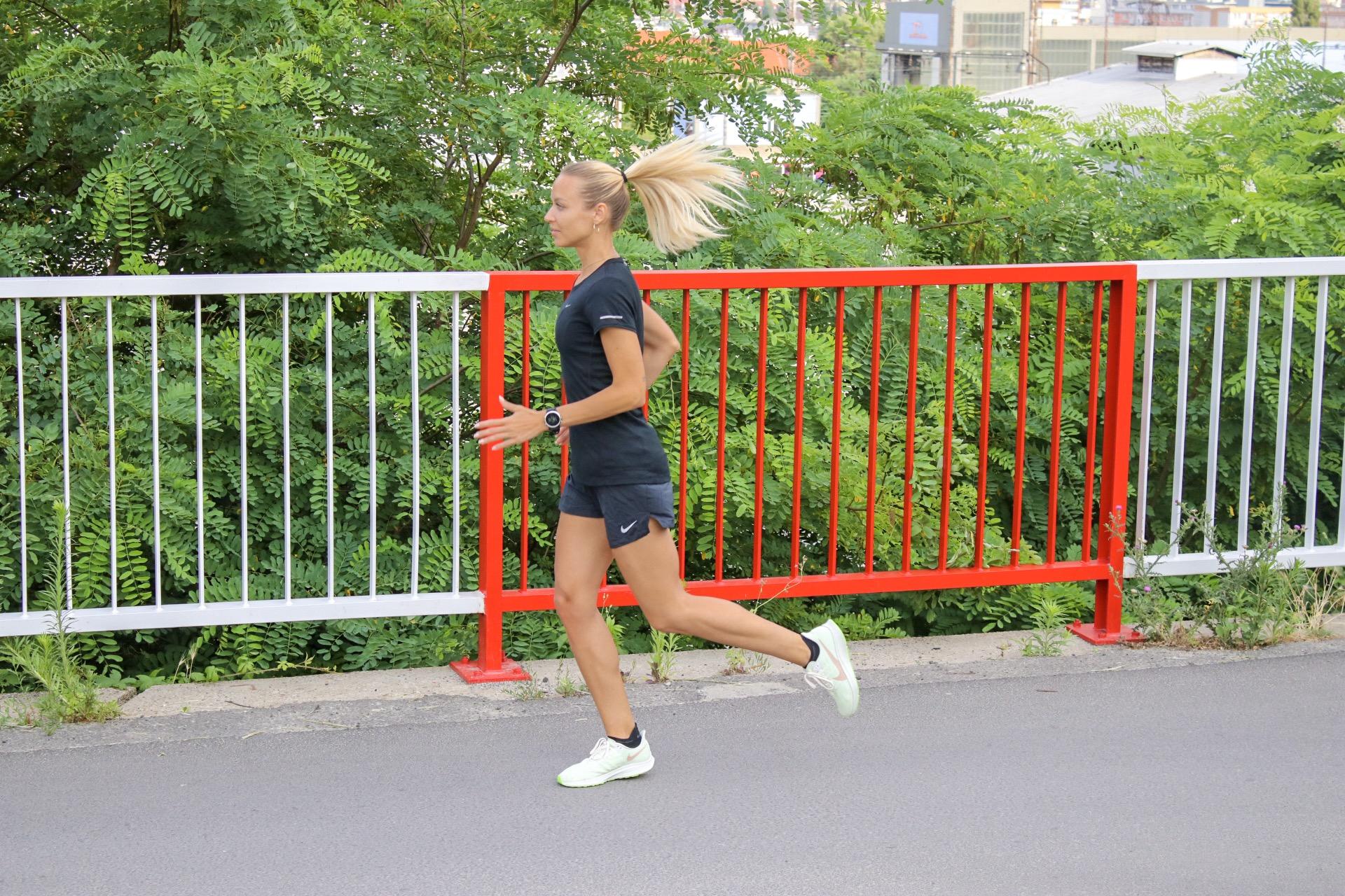 Nyborhy Nike Pegasus 36