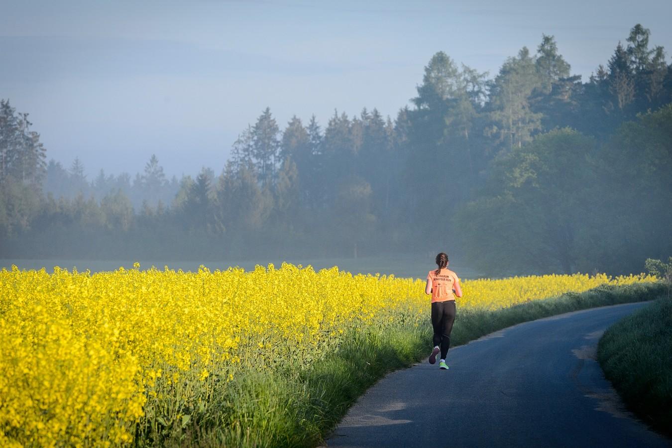 Pokud jen máte možnost vyrazit do přírody, neváhejte a vyběhněte.