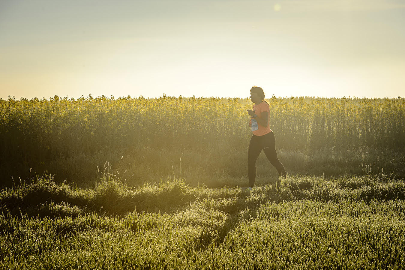 V ranním slunci na Vlava Run 2017