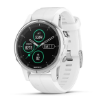 Watch Garmin GARMIN FÉNIX 5S PLUS