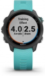 Uhren Garmin Garmin Forerunner 245 Music Optic Blue