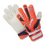Goalkeeper's gloves Puma evoPOWER Protect 2 RC