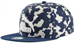 LS ColourBlock SnapBack Birch-Graphic