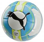 Míč Puma evoPOWER 1.3 Statement (FIFA Appr) white