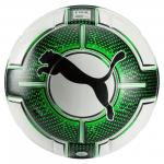 Lopta Puma evoPOWER 1.3 Statement (FIFA Appr)