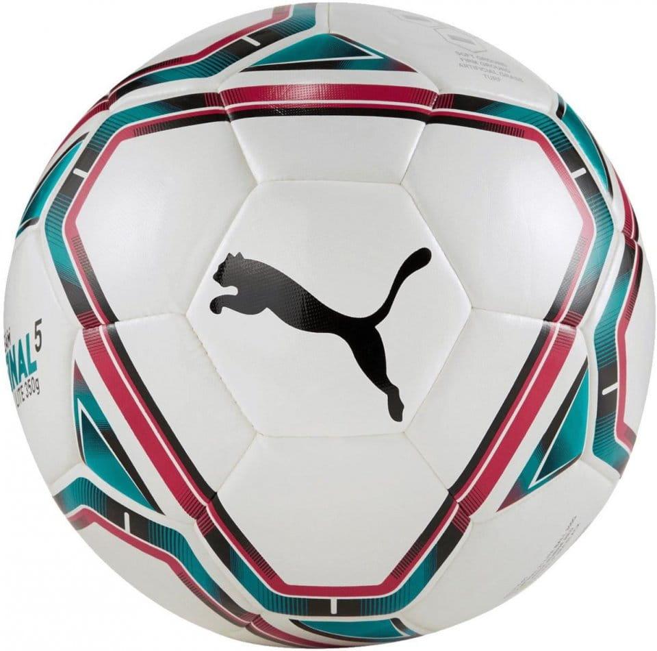 Fotbalový míč Puma teamFINAL 21 Lite