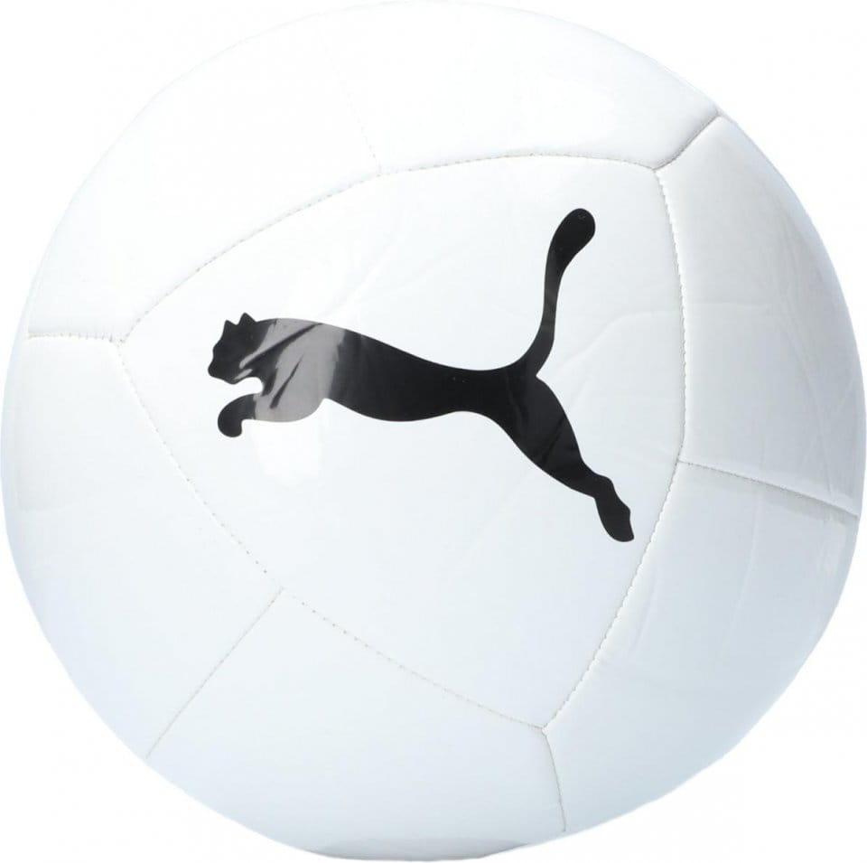 Fotbalový tréninkový míč Puma Icon