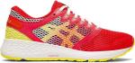 Pantofi de alergare Asics RoadHawk FF 2