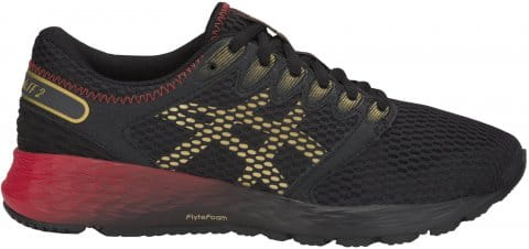 Zapatillas de running Asics RoadHawk FF 2
