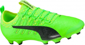 evopower vigor 2 ag f01