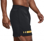 Šortky Under Armour Perpetual Short