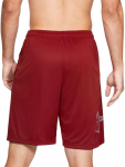 Pantalón corto Under Armour UA TECH GRAPHIC SHORT