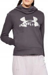 Mikina s kapucí Under Armour Cotton Fleece Sportstyle Logo hoodie-Gra