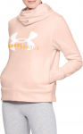 Sudadera con capucha Under Armour Cotton Fleece Sportstyle Logo hoodie