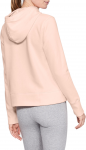 Sudadera con capucha Under Armour Cotton Fleece Sportstyle Logo hoodie