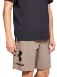 Šortky Under Armour SPORTSTYLE COTTON LOGO SHORT-BRN