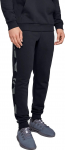 Kalhoty Under Armour RIVAL FLEECE PRINTED JOGGER
