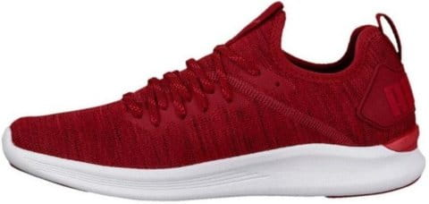 Incaltaminte Puma IGNITE Flash evoKNIT