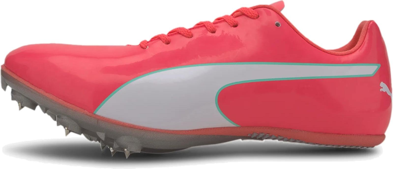 evospeed puma sprint