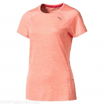 S S Tee W fluro peach heather