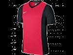 Dres Nike SS YTH PARK DERBY JERSEY - TEAMSPORT