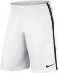 max graphic short nb 6