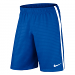 Kraťasy Nike Max Graphic Shorts (No Brief)