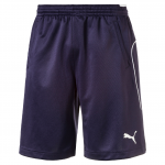 Šortky Puma Training Short new navy-new navy