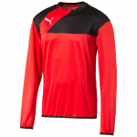 Triko s dlouhým rukávem Puma Esquadra Training Sweat red-black