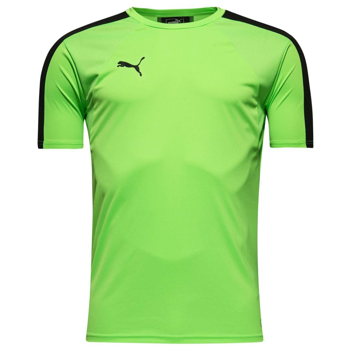 Pánské tréninkové tričko Puma IT evoTRG bdedde89ef