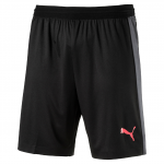 Šortky Puma evoTRG Tech Shorts Black-Ebony-Fier