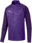 cup training core 1/4 zip top lila f10
