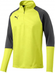 cup training core 1/4 zip top f16