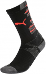 Team ftblNXT Socks