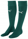 Team Socks power green-white
